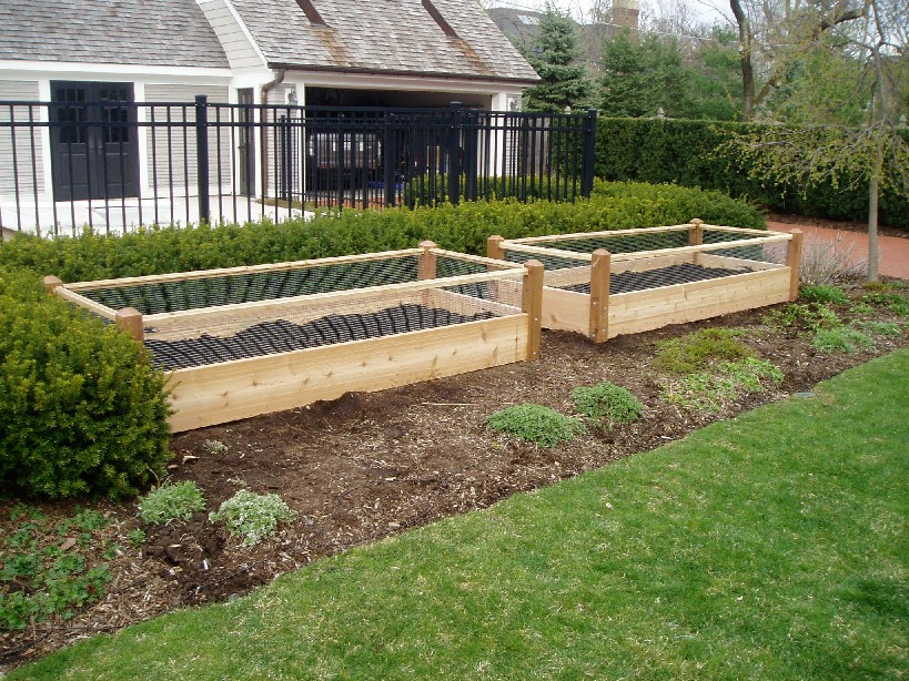 Two raised garden beds with rabbit railing 3x8x2 for Garden bed fence ideas