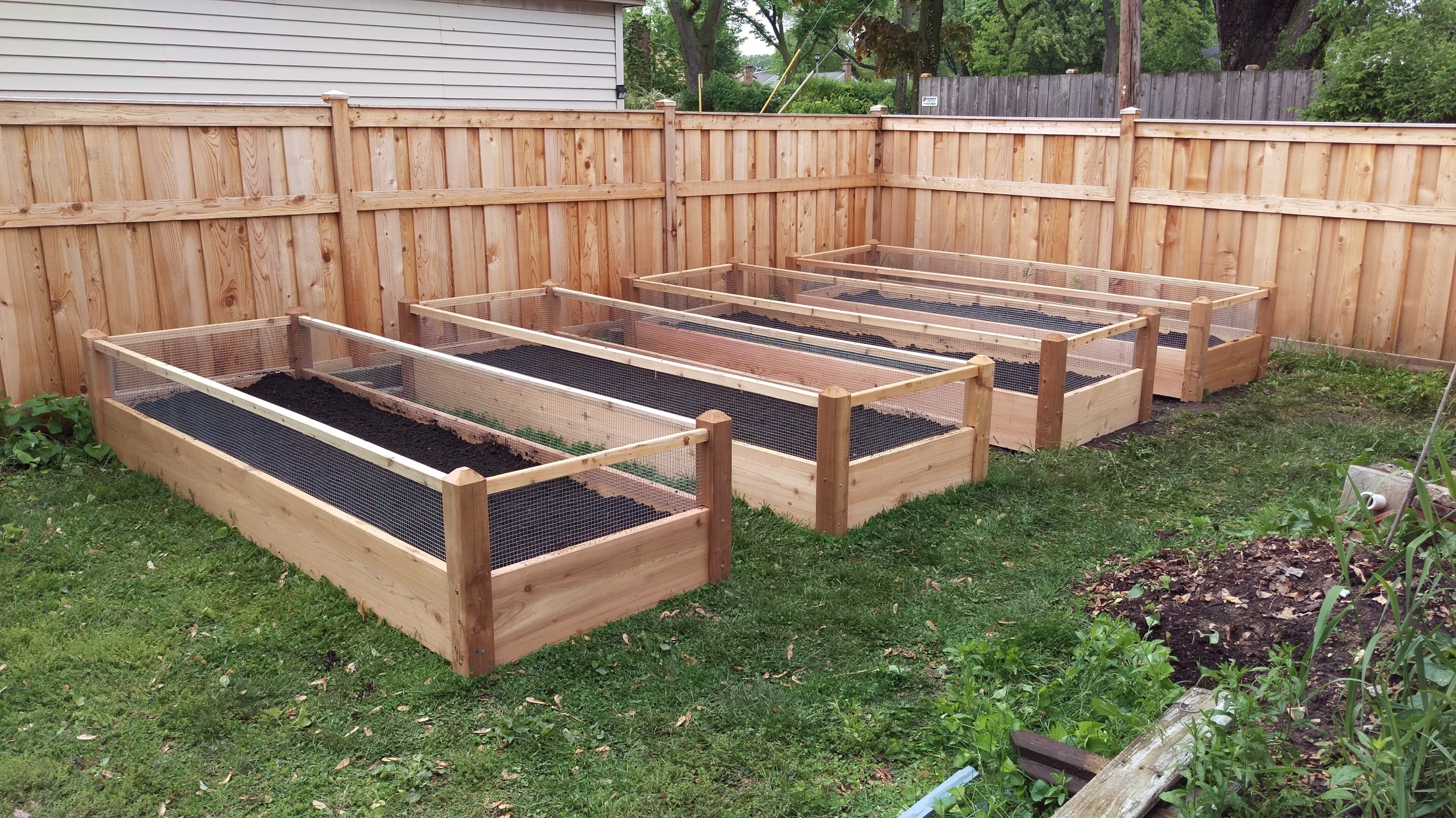 4 four raised bed gardens 3x8x2 - Raised Bed Garden Design Ideas